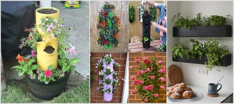 13 Cool Long Planter Ideas for Keen Gardeners 216733 thumb