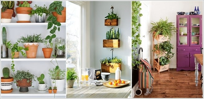10 Incredible Indoor Plant Container Ideas 217747 thumb