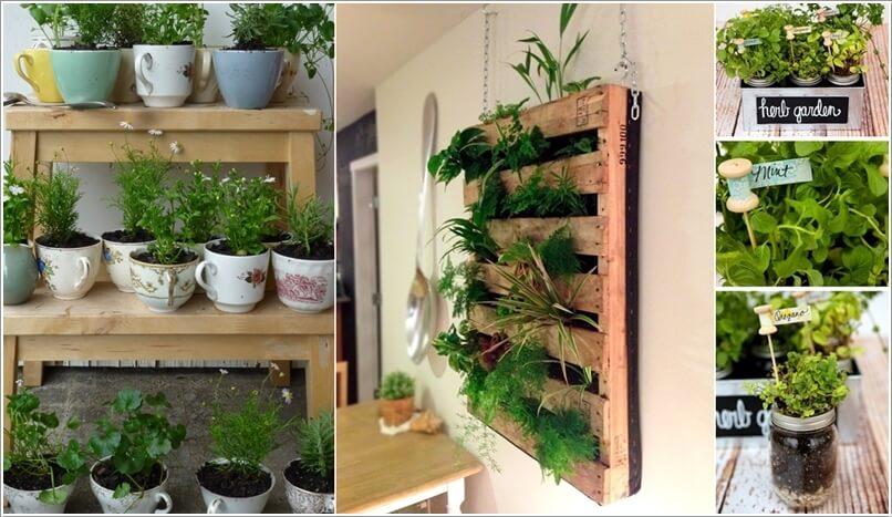 A 10 Cool Diy Ideas To Grow An Indoor Herb Garden A15