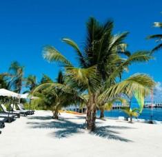 interior design blogs city guide travel (Copy) dream destination City Guide: Belize, a dream destination interior design blogs city guide travel Copy1 235x228